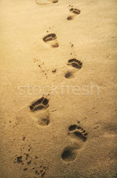 Stockfoto: Voetafdrukken · zand · zonsondergang · zee · achtergrond · zomer