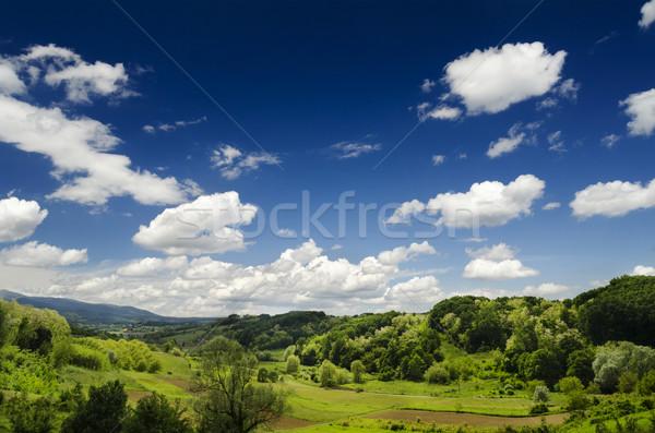Idílico paisaje cielo azul verde campos nubes Foto stock © hitdelight