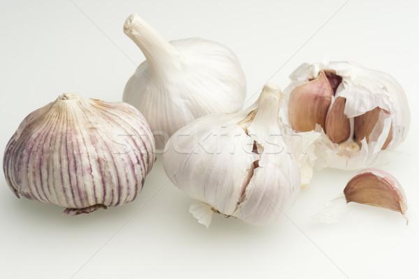 чеснока свежие готовый приготовления растительное здорового Сток-фото © HJpix