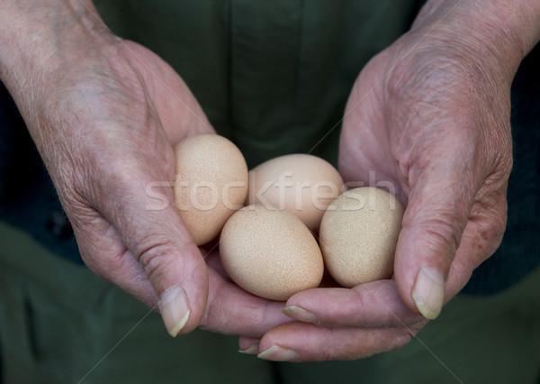человека яйца пожилого четыре Сток-фото © HJpix