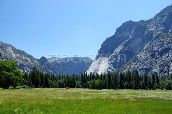 Yosemite völgy Yosemite Nemzeti Park Kalifornia égbolt fű Stock fotó © hlehnerer