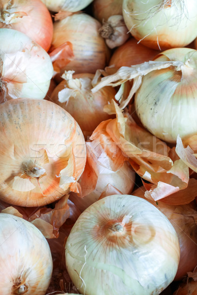 Onioins Stock photo © hlehnerer
