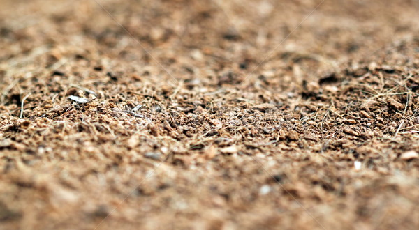 mulch Stock photo © hlehnerer