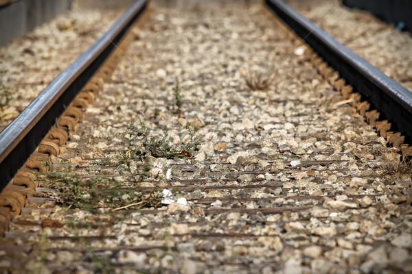 Train Tacks Stock photo © hlehnerer