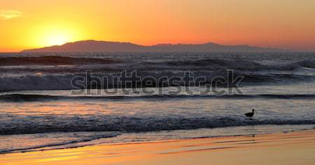 Zonsondergang golven oceaan eiland hemel landschap Stockfoto © hlehnerer