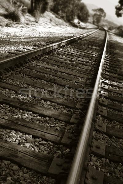 Railroad Tracks Stock photo © hlehnerer