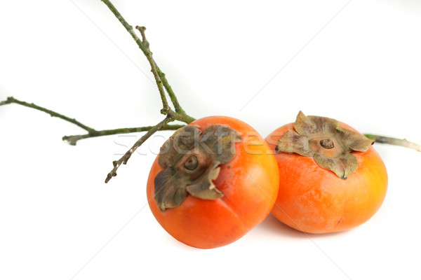 Persimmon Stock photo © hlehnerer