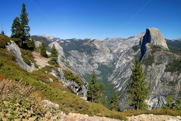 Yosemite kopuła jeden duży Zdjęcia stock © hlehnerer