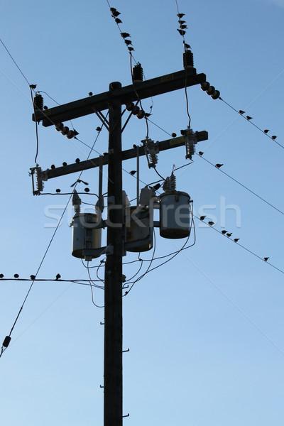 Power Pole Stock photo © hlehnerer