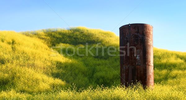 Silo Stock photo © hlehnerer