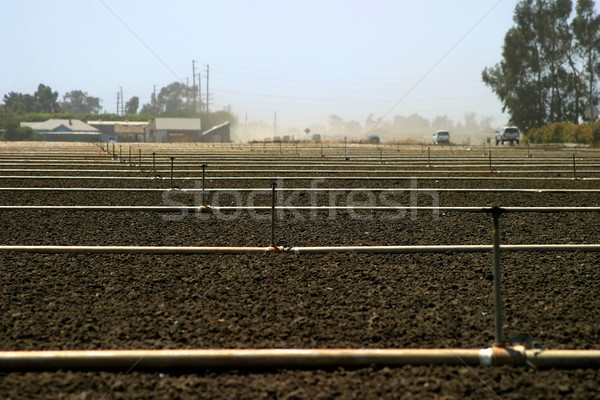 empty field  Stock photo © hlehnerer