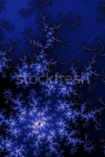 Donkere Blauw fractal verschillend abstract kunst Stockfoto © hlehnerer