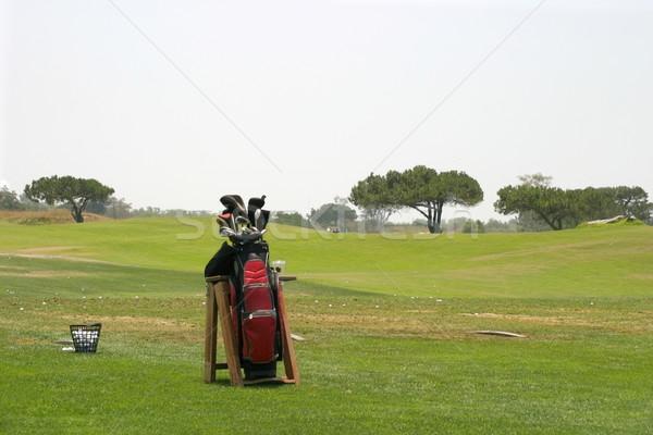 Golf Bag Stock photo © hlehnerer