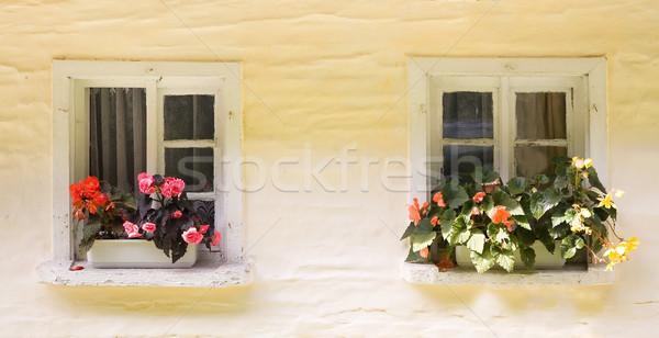 two rural windows Stock photo © Hochwander