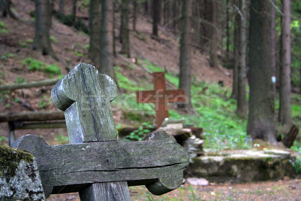 wooden cross on old german cemetery in Gluszyca (Poland) Stock photo © Hochwander