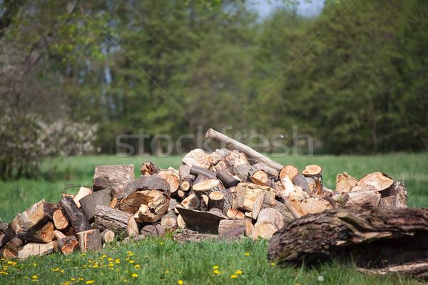 chocked wood Stock photo © Hochwander