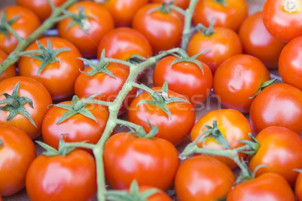 tomatos in vegetable market Stock photo © Hochwander