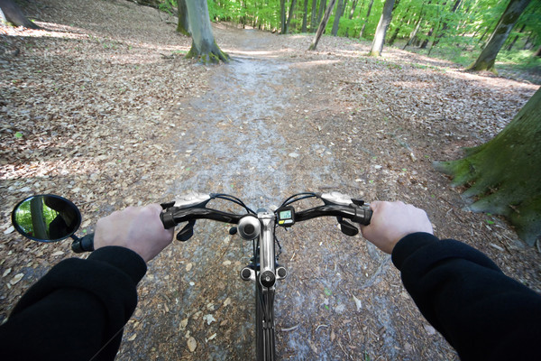 Stock photo: riding through the forest