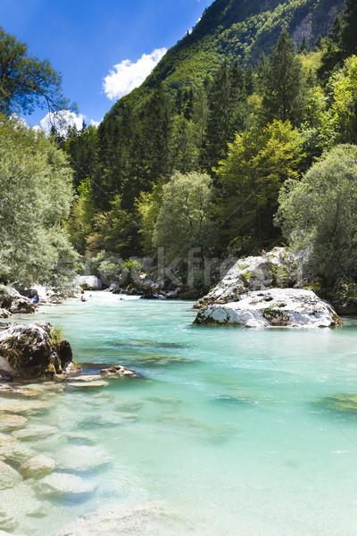 Alpen Slovenië rivier berg zuidelijk Stockfoto © Hochwander