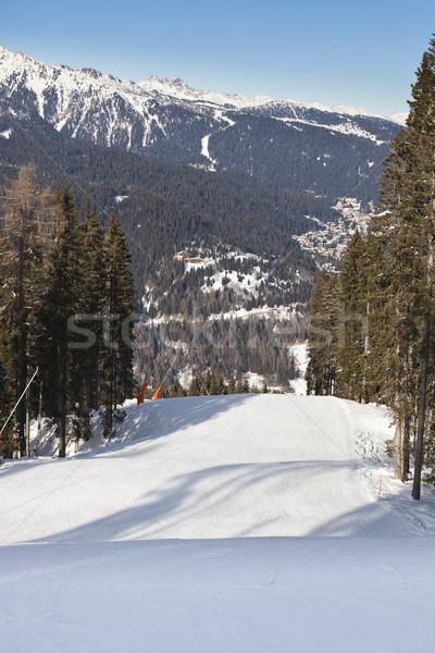 Kış manzara fotoğraf İtalyan ağaç orman Stok fotoğraf © Hochwander