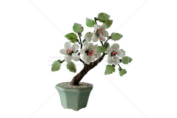 model of bonzai tree (isolated) Stock photo © Hochwander