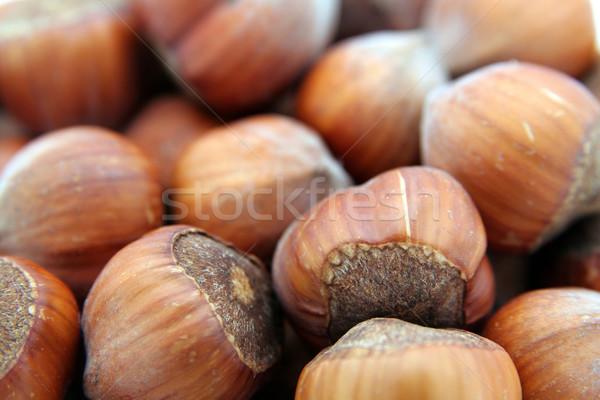 Chocolade shell patroon eten room Stockfoto © Hochwander