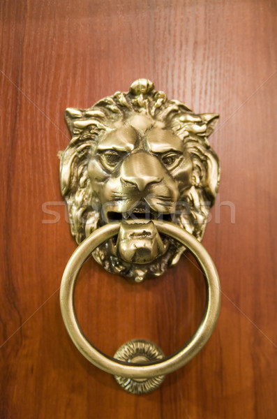 door knocker on the doors with small depth of field Stock photo © Hochwander