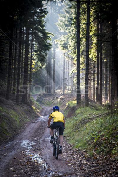 Genç çamurlu yol dağlar Polonya Stok fotoğraf © Hochwander
