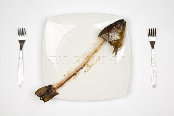 Hal fej farok szimbólum nyomorúság vacsora Stock fotó © Hochwander