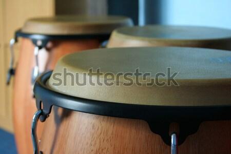 Három öreg fa bőr zene boldog Stock fotó © Hochwander