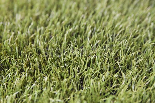 Photo stock: Herbe · artificielle · photo · peu · profond · texture · football · jardin