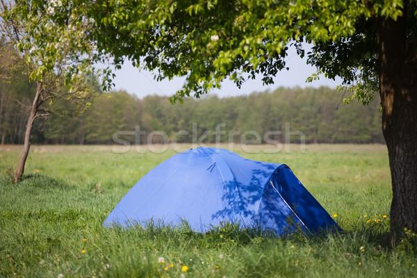 Blauw tent boom zomer landschap gras Stockfoto © Hochwander