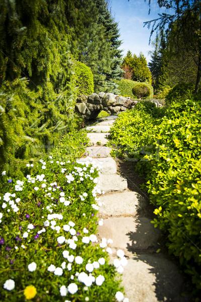 Jardin chemin été ciel fleur herbe Photo stock © Hochwander