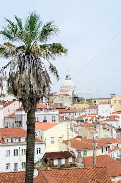View of Lisbon Stock photo © homydesign