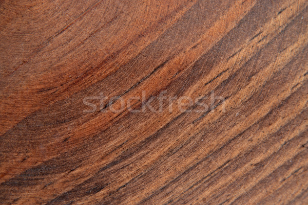 Oak texture Stock photo © homydesign