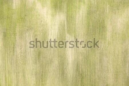Groene geschilderd artistiek doek textuur papier Stockfoto © homydesign