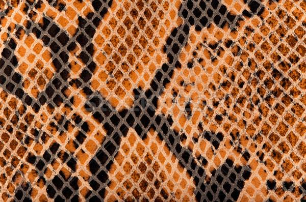 Snake Skin Leather Texture  Stock photo © homydesign