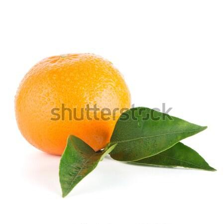 Maduro mandarina aislado blanco frutas Foto stock © homydesign