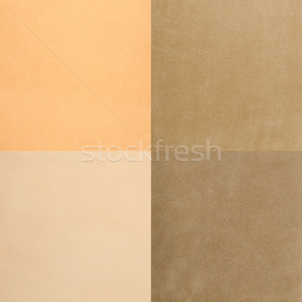 Set of beige leather samples Stock photo © homydesign