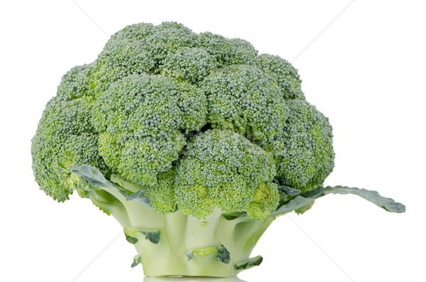 Stockfoto: Broccoli · geïsoleerd · witte · boom · voedsel · natuur
