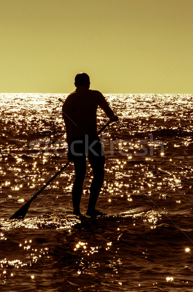 Silhouette paddle board surfer Stock photo © homydesign