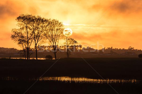 Сток-фото: закат · небе · солнце · оранжевый