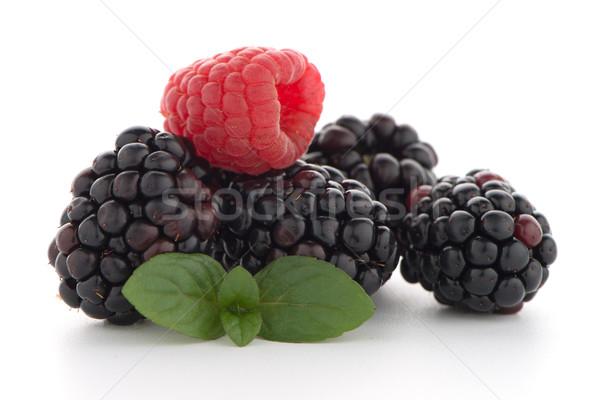 Framboos BlackBerry witte voedsel natuur geneeskunde Stockfoto © homydesign