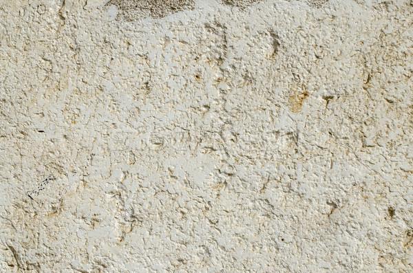 Kalksteen textuur abstract achtergrond architectuur Stockfoto © homydesign