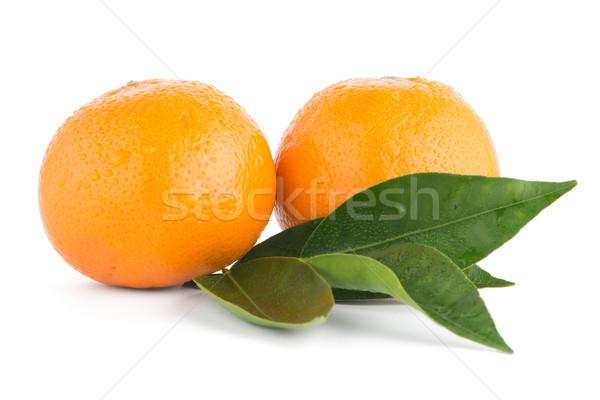Maduro tangerina mandarim isolado branco fruto Foto stock © homydesign