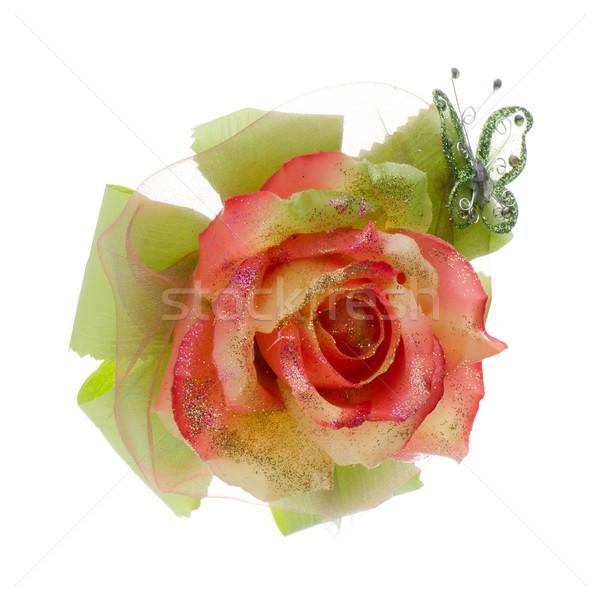 Stock fotó: Gyönyörű · narancs · rózsa · virág · izolált · fehér