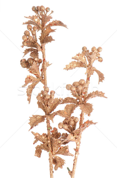 Golden Christmas decoration branches Stock photo © homydesign