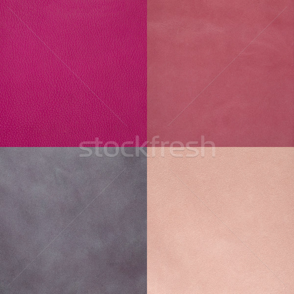 Set of pink leather samples Stock photo © homydesign