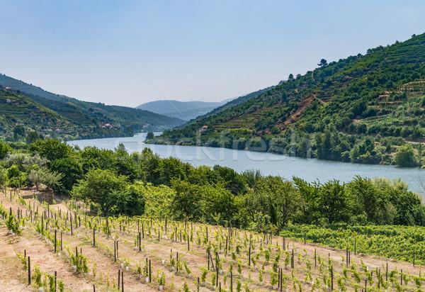Vue vallée Portugal collines ciel eau Photo stock © homydesign