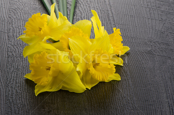 Yellow jonquil flowers Stock photo © homydesign